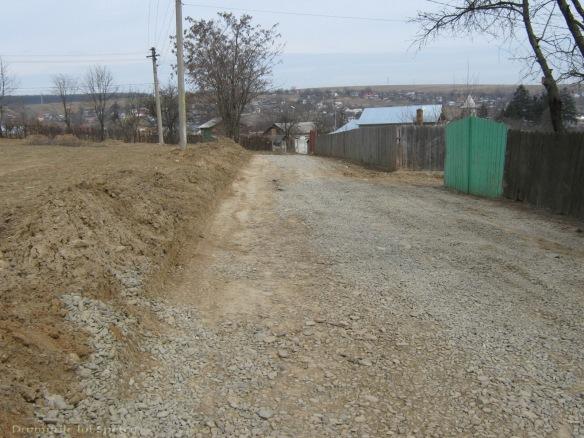 2009 03 29 (Suceava) 109 [1600x1200]