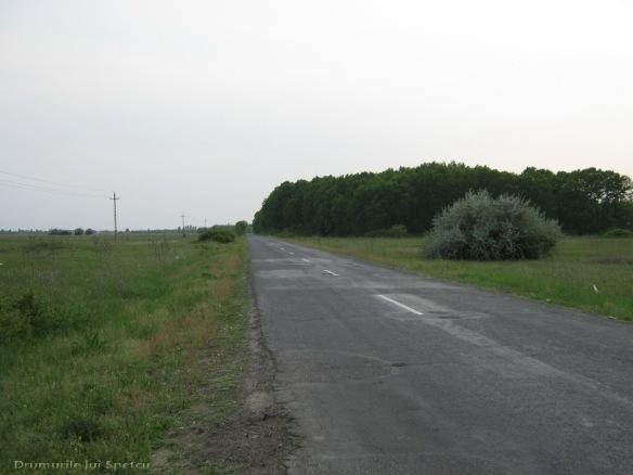 2009 04 27 (Auschwitz - Katowice - Cracovia - Oradea) 023 [1600x1200]