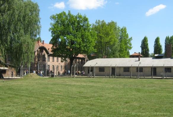 2009 04 27 (Auschwitz - Katowice - Cracovia - Oradea) 051 [1600x1200]