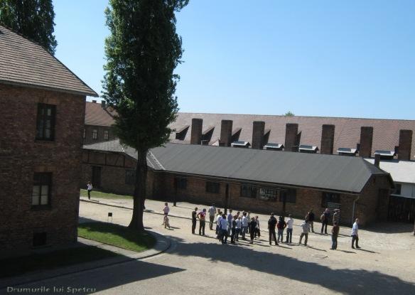 2009 04 27 (Auschwitz - Katowice - Cracovia - Oradea) 077 [1600x1200]