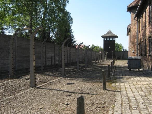 2009 04 27 (Auschwitz - Katowice - Cracovia - Oradea) 107 [1600x1200]