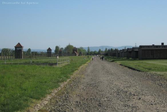 2009 04 27 (Auschwitz - Katowice - Cracovia - Oradea) 178 [1600x1200]