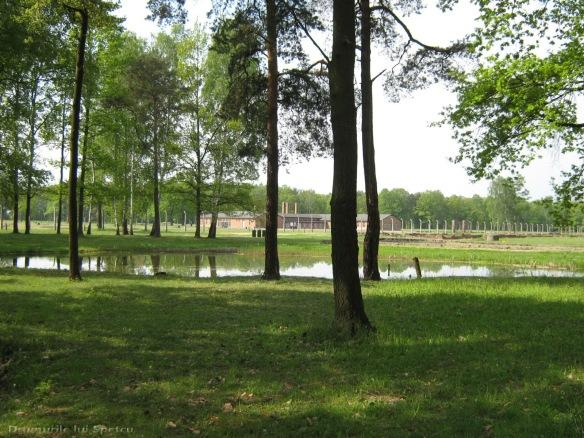 2009 04 27 (Auschwitz - Katowice - Cracovia - Oradea) 278 [1600x1200]