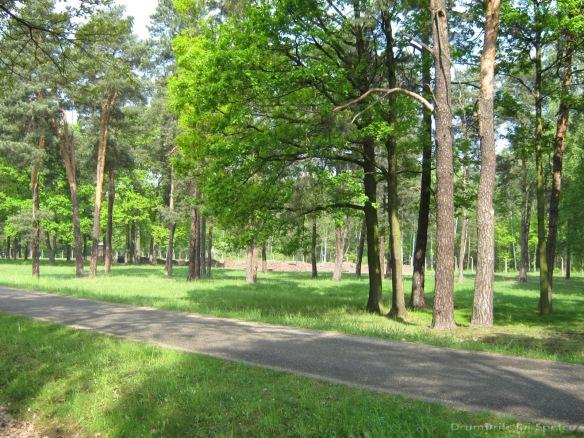 2009 04 27 (Auschwitz - Katowice - Cracovia - Oradea) 279 [1600x1200]