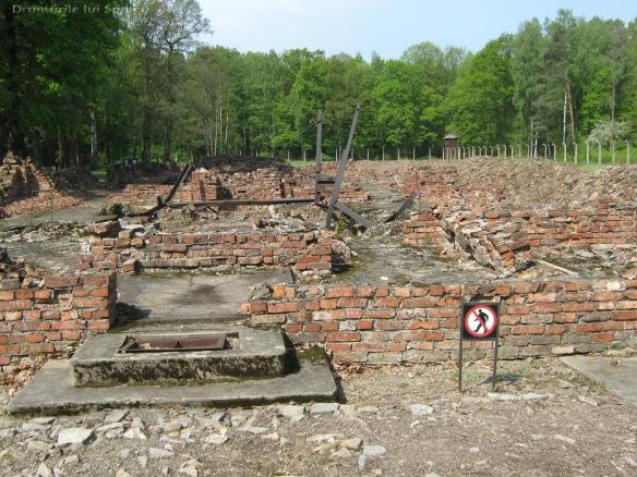 2009 04 27 (Auschwitz - Katowice - Cracovia - Oradea) 287 [1600x1200]