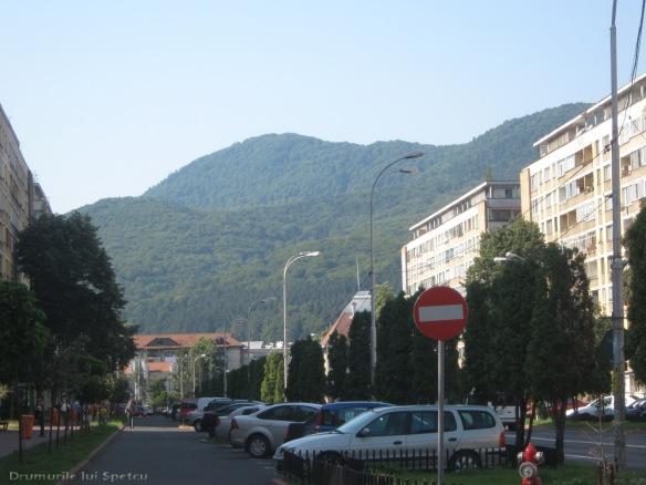 2009 08 10 (PiatraNeamt-Pangarati-Bistrita) 029 [1600x1200]