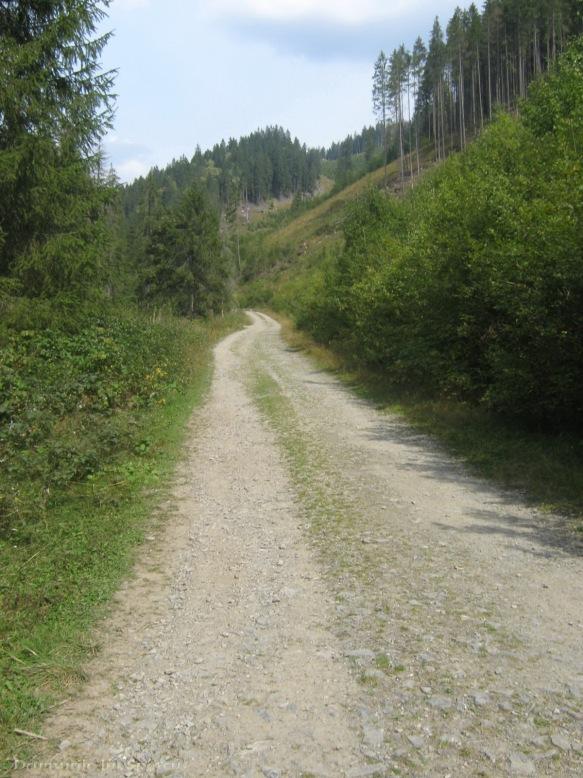 2009 09 12 (Vatra-Dornei - Giumalau) 116 [1600x1200]