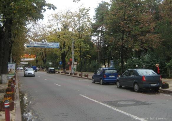 2009 10 10 (Botosani-Ipotesti) 083 [1600x1200]