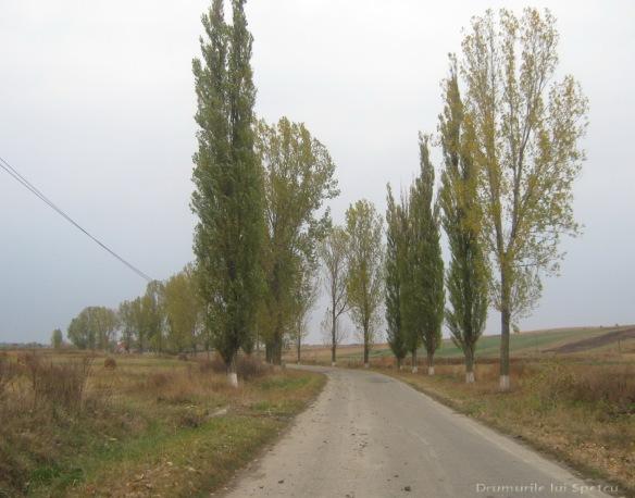 2009 10 10 (Botosani-Ipotesti) 134 [1600x1200]