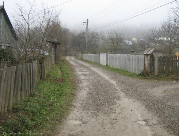 2009 11 08 (Vicovu de Jos) 061 [1600x1200]