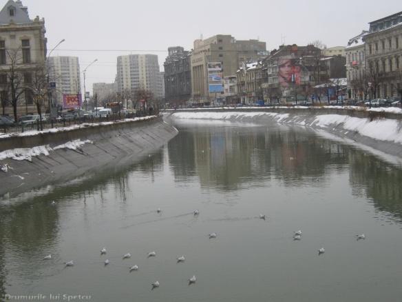 2010 02 12 (Bucuresti) 002 [1600x1200]