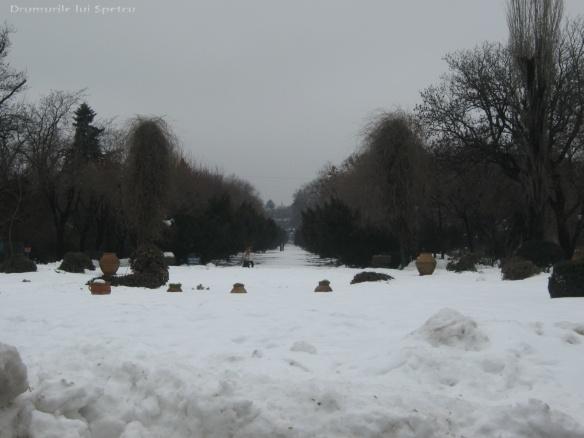 2010 02 12 (Bucuresti) 037 [1600x1200]