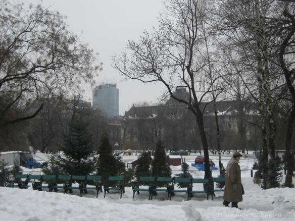 2010 02 12 (Bucuresti) 042 [1600x1200]