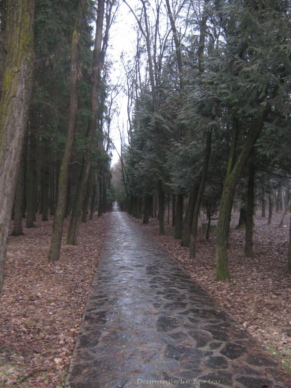 2010 02 27-28 (Sighet-Sapanta) 191 [1600x1200]