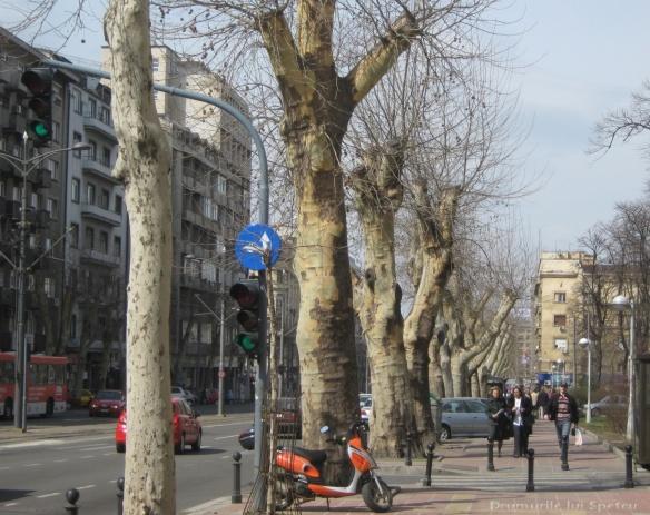 2010 03 20-21 (Oradea-Timisoara-Belgrad) 136 [1600x1200]