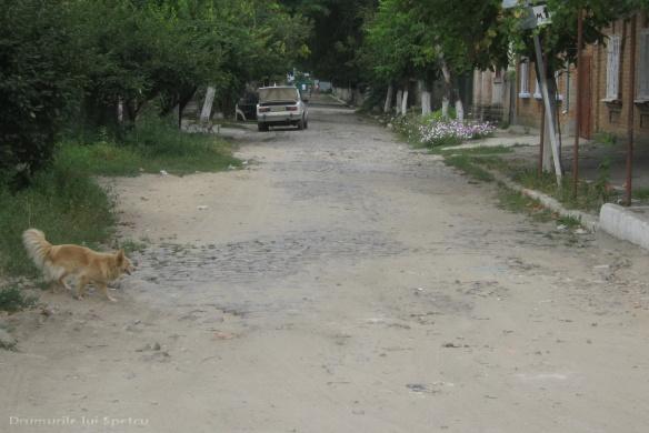 2010 08 05-08 (Chisinau-Cetatea Alba-Odessa-Tighina-Tiraspol) 238 [1600x1200]