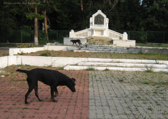2010 08 16-20 (Targoviste - Bucuresti - Rosiori - Turnu - V. Ol) 022 [1600x1200]