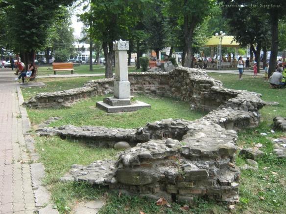 2010 08 16-20 (Targoviste - Bucuresti - Rosiori - Turnu - V. Ol) 111 [1600x1200]
