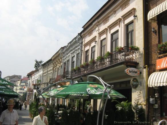 2010 08 16-20 (Targoviste - Bucuresti - Rosiori - Turnu - V. Ol) 148 [1600x1200]