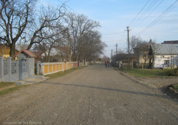 2010 11 07 (Suceava) 046 [1600x1200]