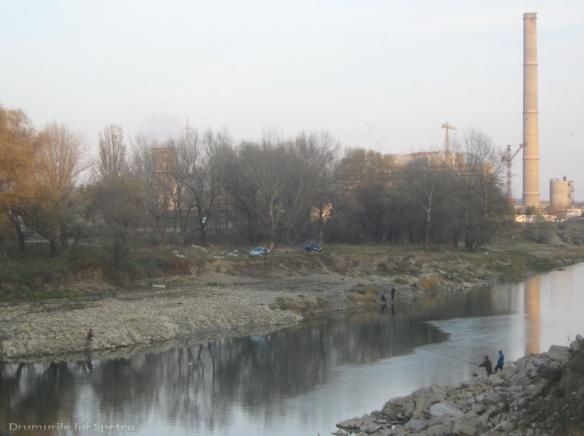 2010 11 07 (Suceava) 087 [1600x1200]