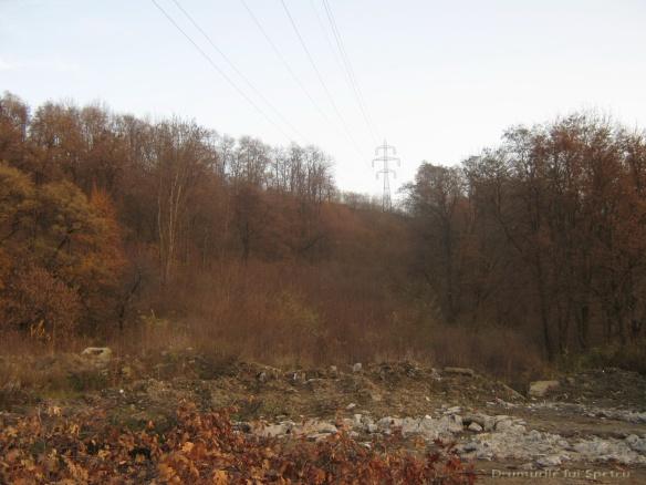 2010 11 07 (Suceava) 099 [1600x1200]