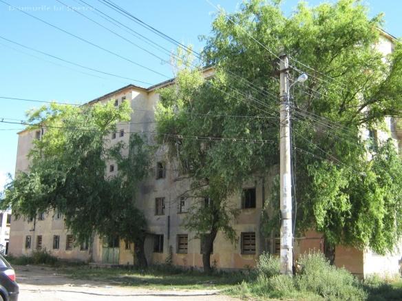 2010 08 16-20 (Targoviste - Bucuresti - Rosiori - Turnu - V. Ol) 292 [1600x1200]