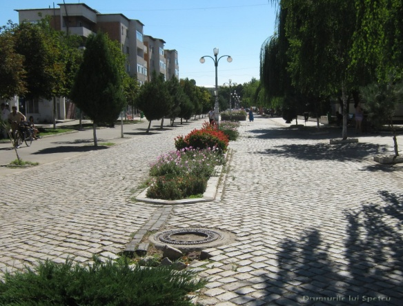 2010 08 16-20 (Targoviste - Bucuresti - Rosiori - Turnu - V. Ol) 306 [1600x1200]