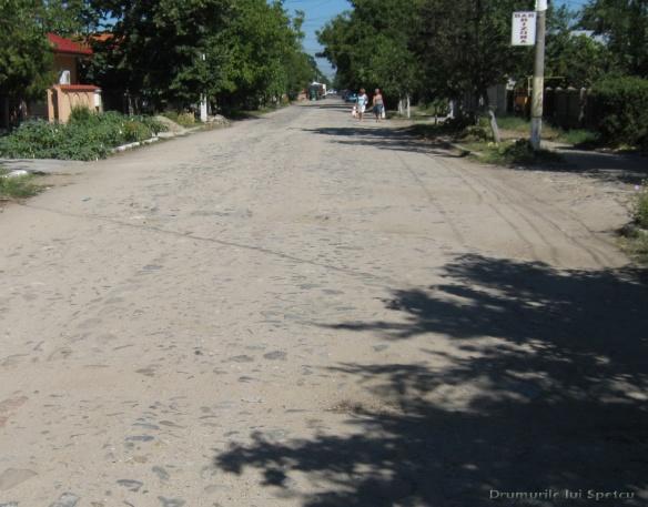 2010 08 16-20 (Targoviste - Bucuresti - Rosiori - Turnu - V. Ol) 319 [1600x1200]