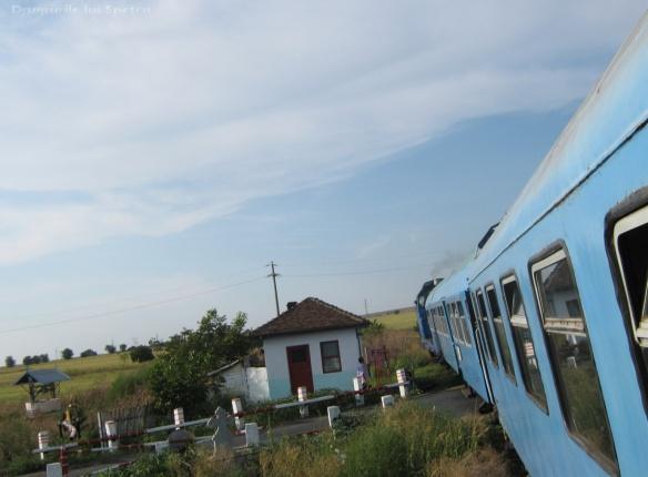 2010 08 16-20 (Targoviste - Bucuresti - Rosiori - Turnu - V. Ol) 426 [1600x1200]