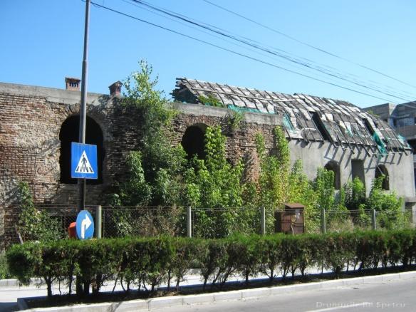 2010 08 16-20 (Targoviste - Bucuresti - Rosiori - Turnu - V. Ol) 529 [1600x1200]
