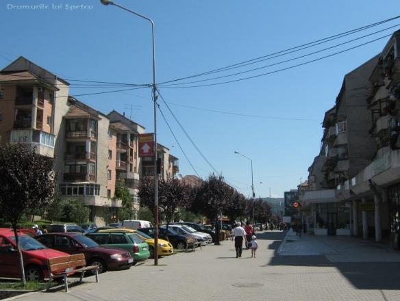 2010 08 16-20 (Targoviste - Bucuresti - Rosiori - Turnu - V. Ol) 636 [1600x1200]