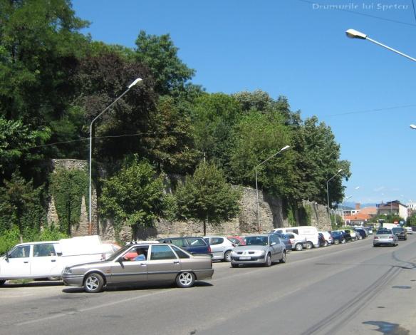 2010 08 16-20 (Targoviste - Bucuresti - Rosiori - Turnu - V. Ol) 646 [1600x1200]