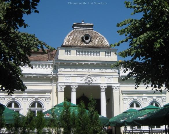 2010 08 16-20 (Targoviste - Bucuresti - Rosiori - Turnu - V. Ol) 652 [1600x1200]