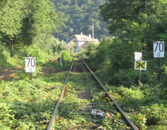 2010 08 16-20 (Targoviste - Bucuresti - Rosiori - Turnu - V. Ol) 884 [1600x1200]