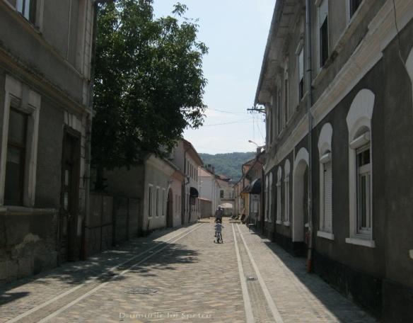 2014 08 08-10 (Nasaud-Bistrita-Targu Mures-Reghin-Toplita) 071 [1600x1200]