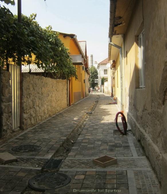 2014 08 08-10 (Nasaud-Bistrita-Targu Mures-Reghin-Toplita) 106 [1600x1200]