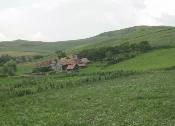 2014 08 08-10 (Nasaud-Bistrita-Targu Mures-Reghin-Toplita) 170 [1600x1200]
