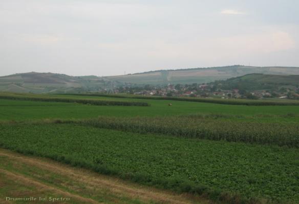2014 08 08-10 (Nasaud-Bistrita-Targu Mures-Reghin-Toplita) 203 [1600x1200]