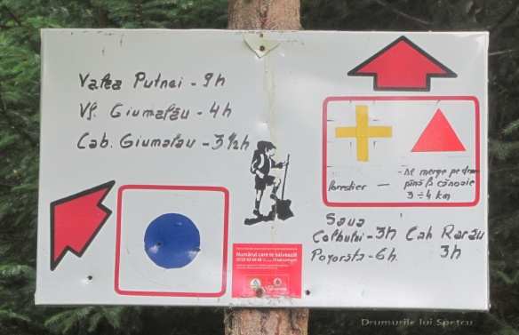 2014 08 20 (Creasta Giumalaului) 162 [1600x1200]