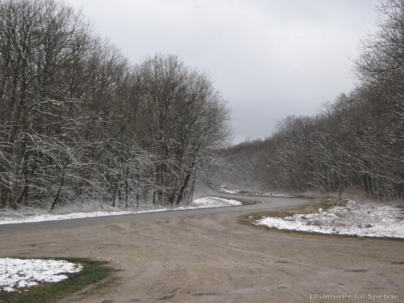 2011 03 27 (Chisinau) 073 [1600x1200]