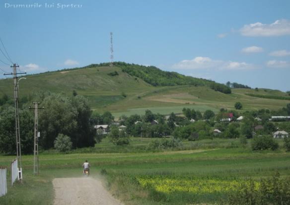 2011 06 05 (Probota - Dolhesti) 131 [Rezolutia desktop-ului]