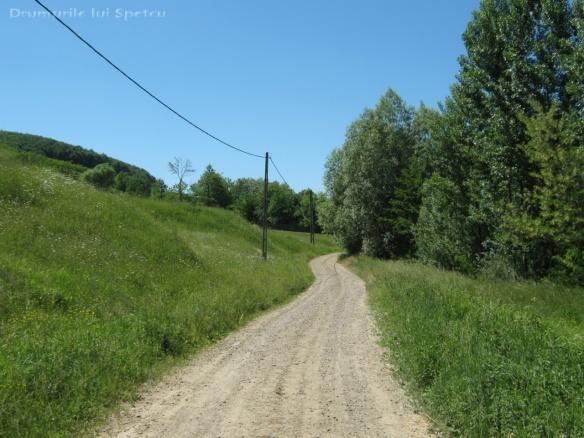 2011 06 05 (Probota - Dolhesti) 149 [Rezolutia desktop-ului]