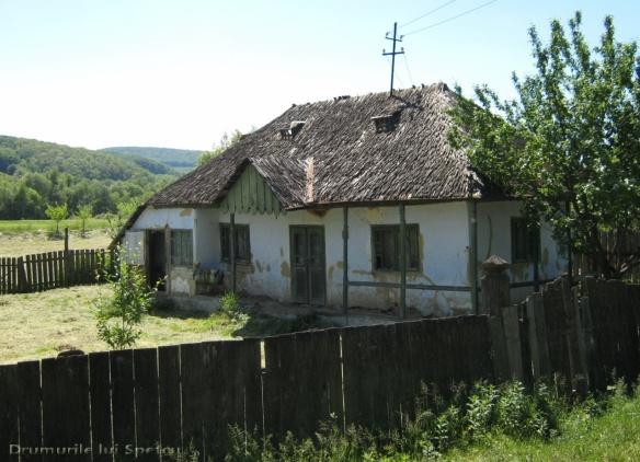 2011 06 05 (Probota - Dolhesti) 175 [Rezolutia desktop-ului]