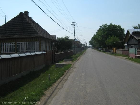 2011 06 19 (Berchisesti - Slatina) 024 [Rezolutia desktop-ului]