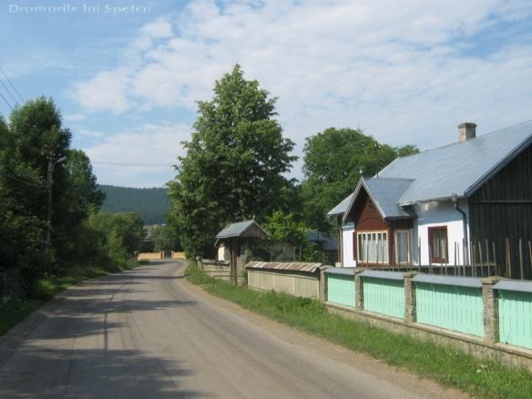 2011 06 19 (Berchisesti - Slatina) 044 [Rezolutia desktop-ului]