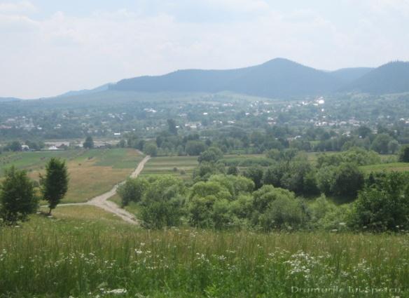 2011 06 19 (Berchisesti - Slatina) 115 [Rezolutia desktop-ului]