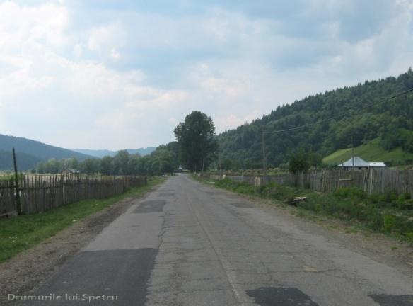 2011 06 19 (Berchisesti - Slatina) 147 [Rezolutia desktop-ului]