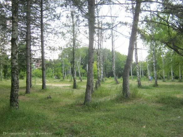 2015 05 30-31-01 (Chisinau - Ungheni) 294 [Rezolutia desktop-ului]