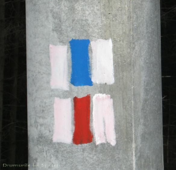 2012 06 03-04 (Rarau) 167 [Rezolutia desktop-ului]